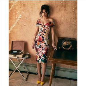 Cushnie et Ochs Alba Surrealist Floral Dress in 8